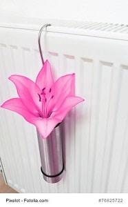 rauchgeruch entfernen tipps und hausmittel gegen kalten rauch. Black Bedroom Furniture Sets. Home Design Ideas