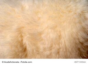 © tinadefortunata - Fotolia.com